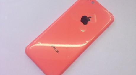 pink-905x505