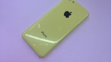 yellow-905x505