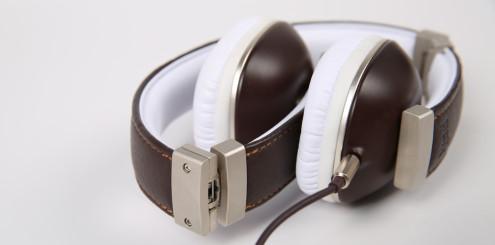 Polk Audio Hinge