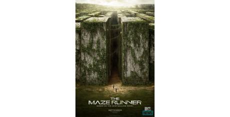 The-Maze-Runner_8