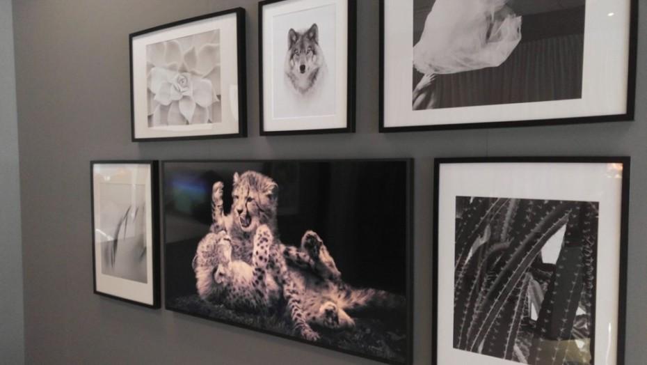 The Frame är den i mitten. Foto: Audun Hage