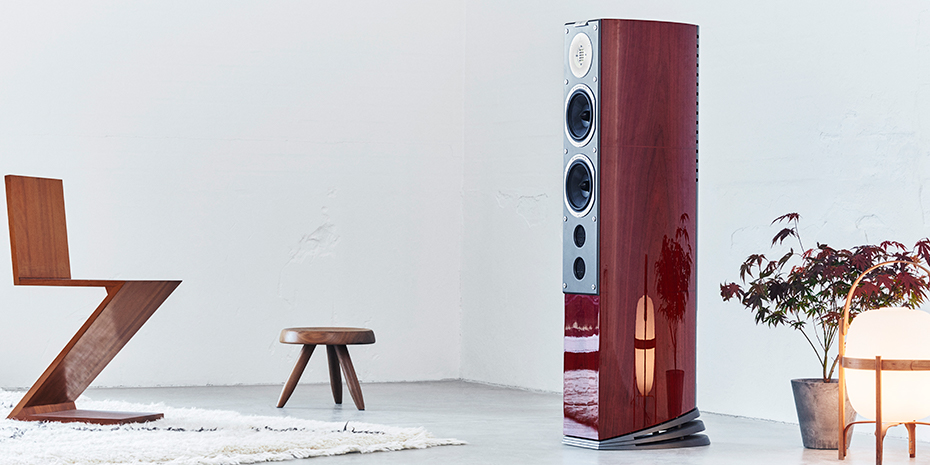 Audiovector SR6 Avantgarde Arreté