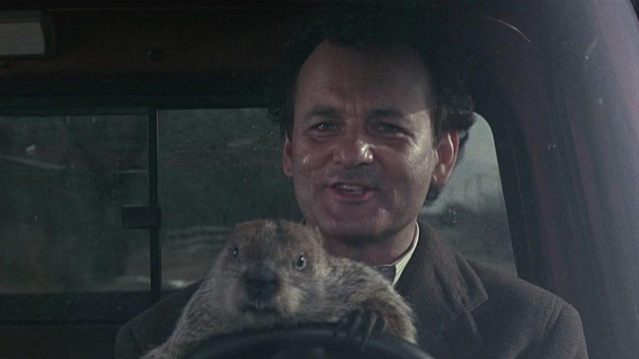 Groundhog Day - 25th Anniversary ed._5