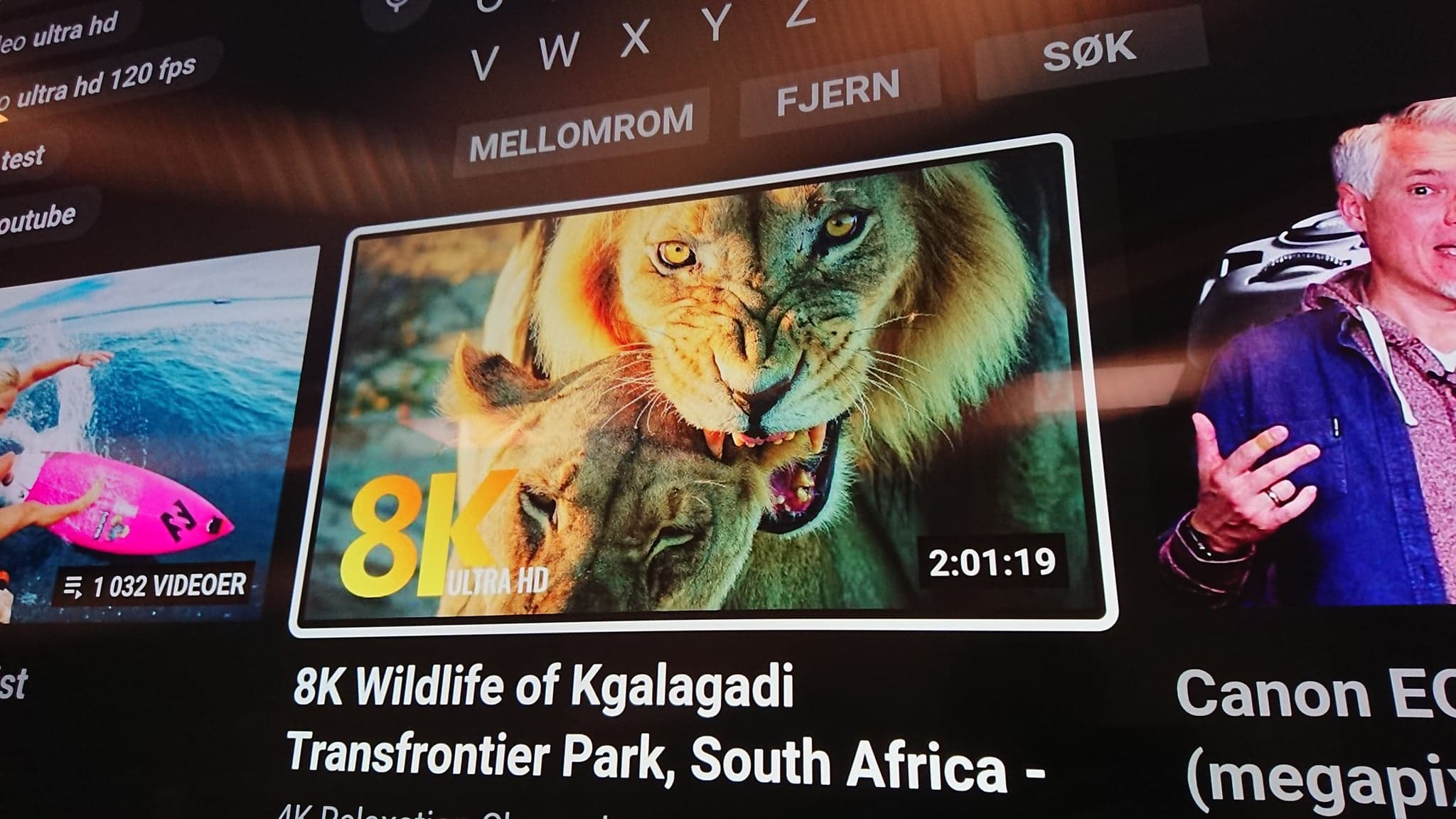 YouTube 8K Tiger