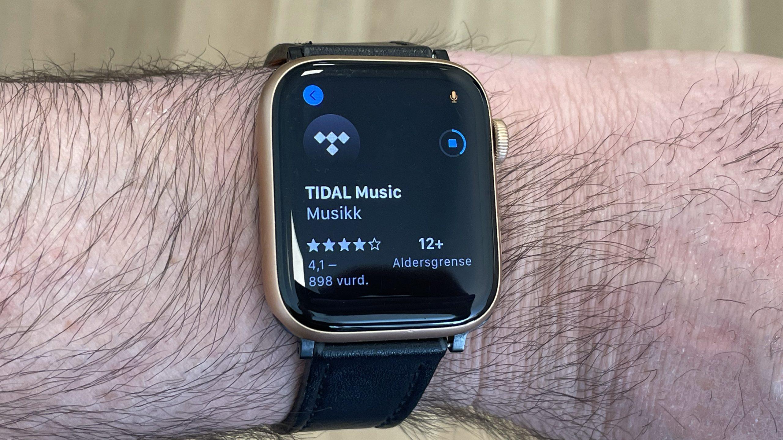 Tidal Apple Watch(2)