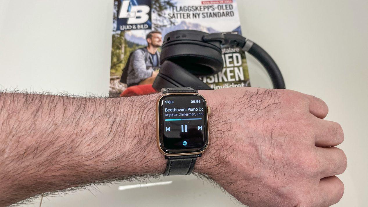 Tidal Apple Watch