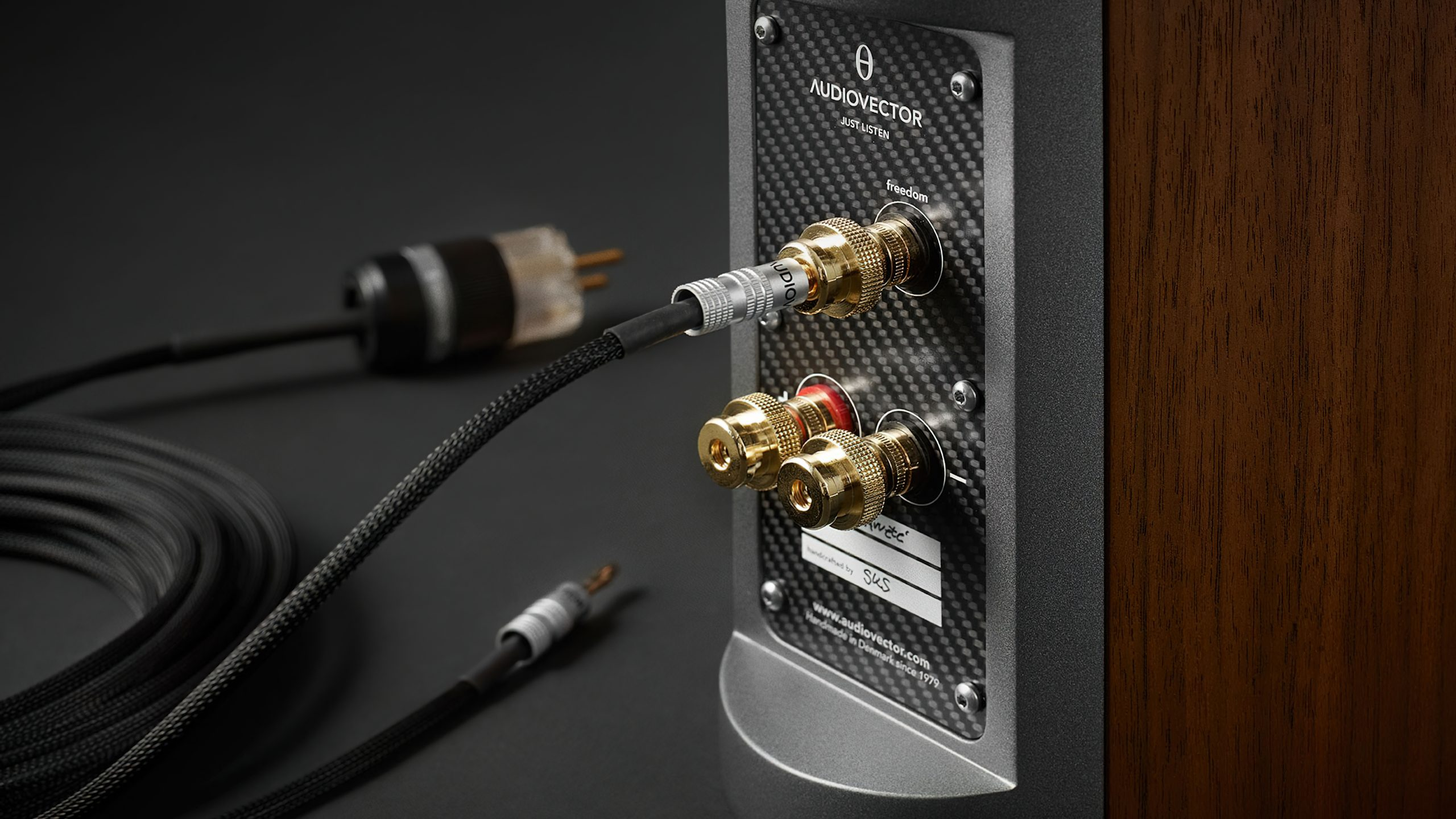 Audiovector Freedom cable